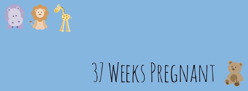 37 Weeks Pregnant | Liz Boltz Ranfeld